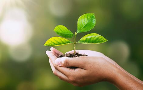 Investire in maniera sostenibile a livello globale